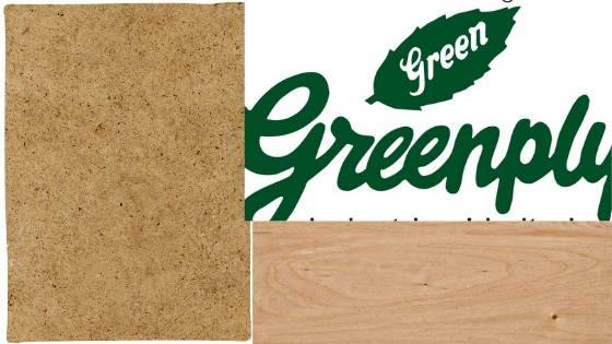 Greenply Company