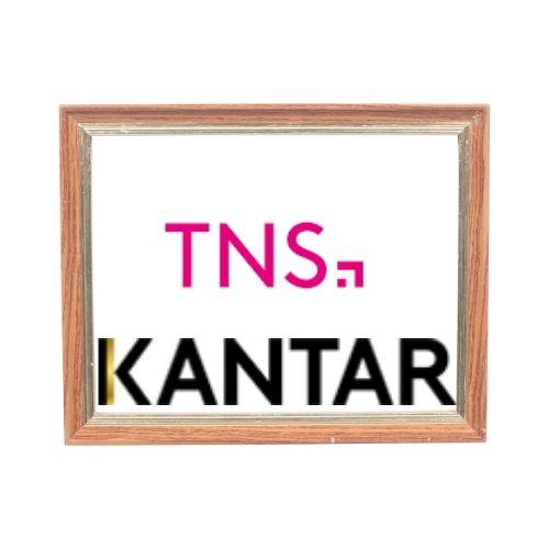 TNS-Global-Logo