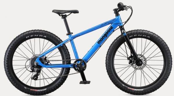 Argus 24 Mongoose Bicycle