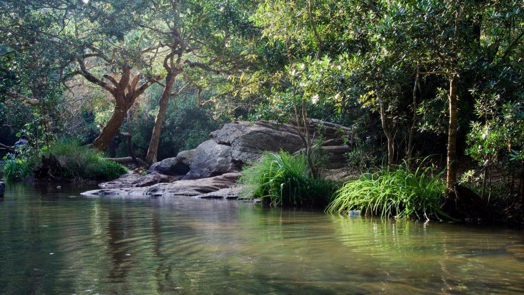 Bheemeshwari-Karnataka-The-Lush-Life