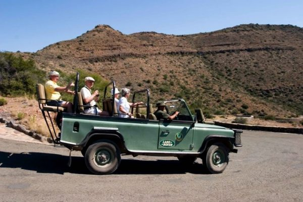 Game Drive In Africa