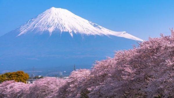 Install-Fuji