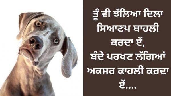 Punjabi-Shayari-on-Mistakes