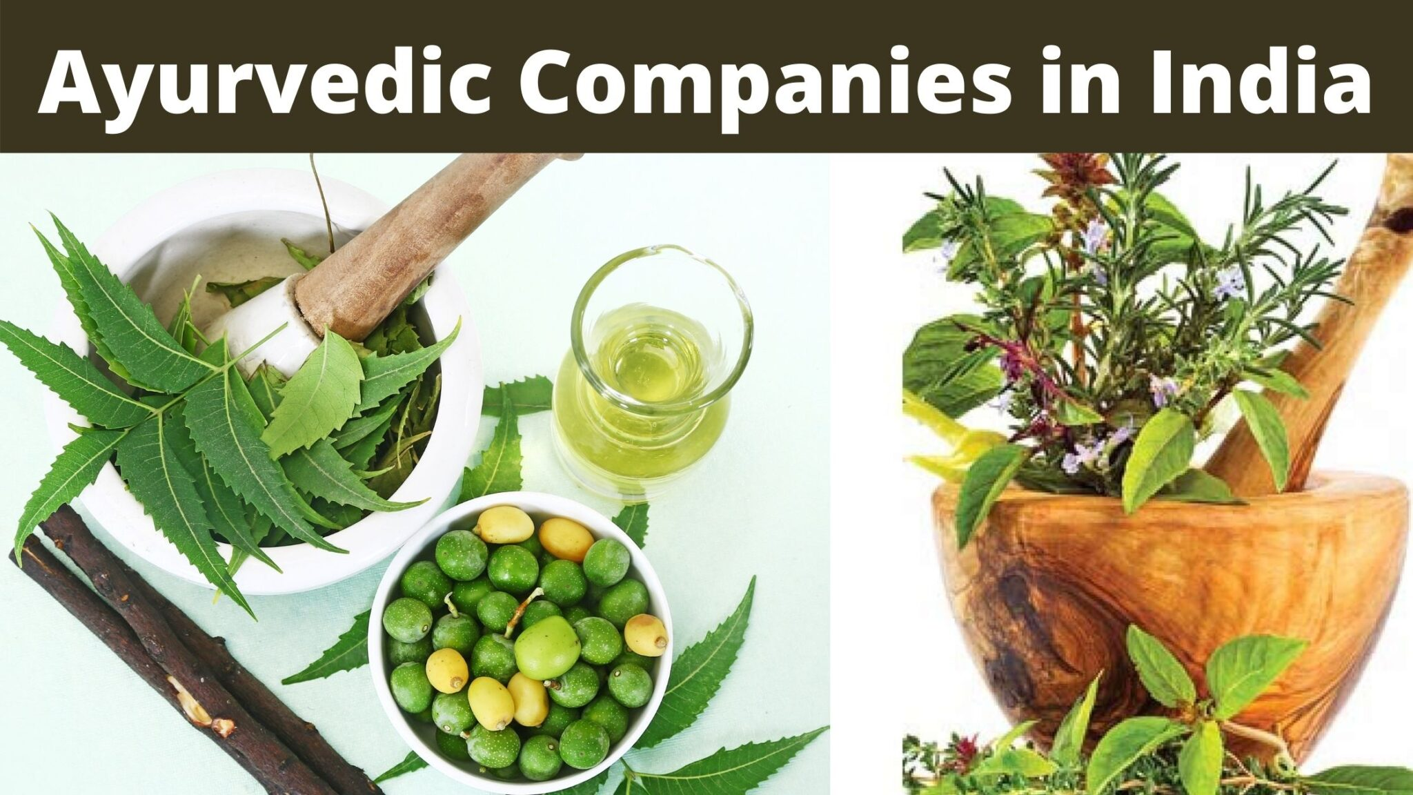 ayurvedic companies in india