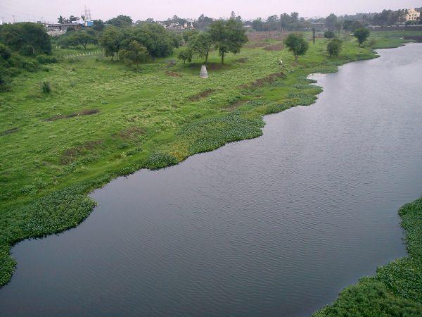 Godavari-River