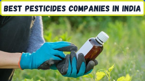 Top 10 Pesticides Companies in India