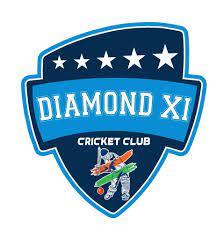 Diamond Cricket Today logo